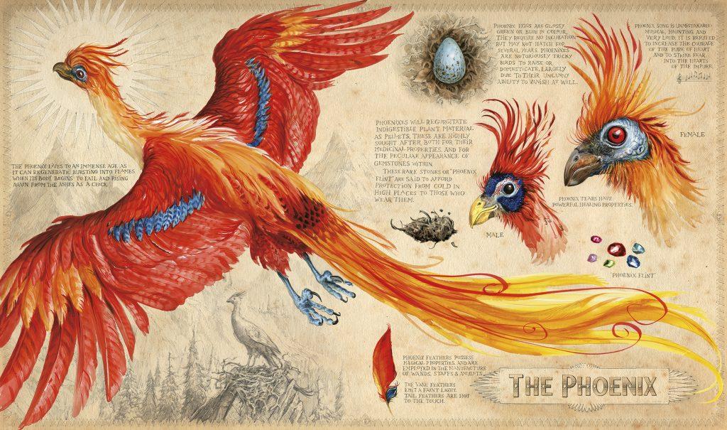 HP2_Phoenix_layers_edit