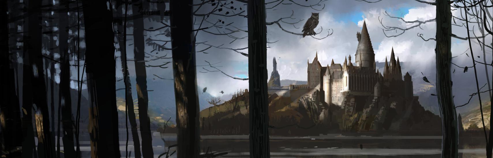 Hogwarts vista através das árvores