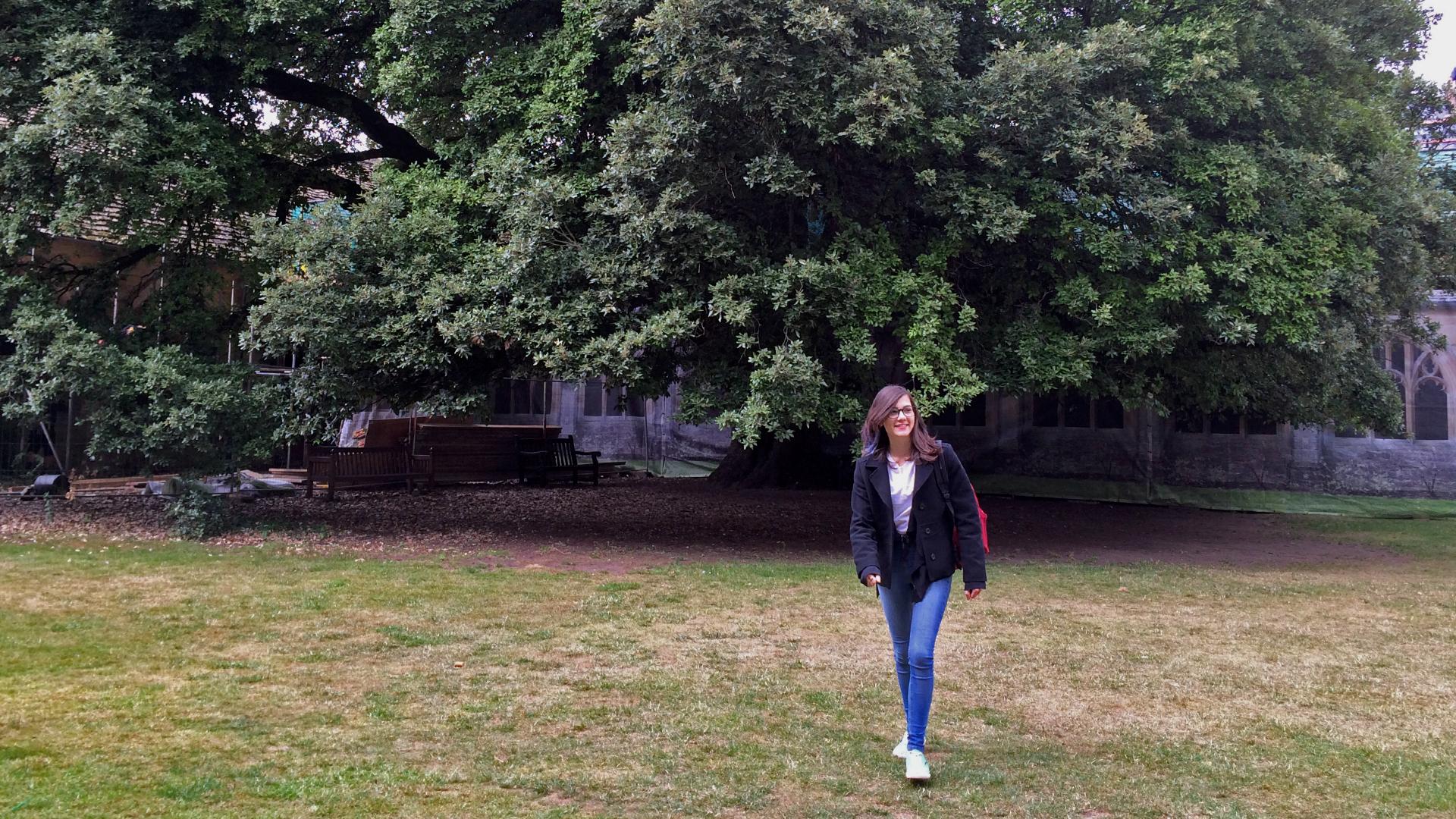 Eu dando uma volta no jardim onde cenas de Cálice de Fogo foram gravadas.