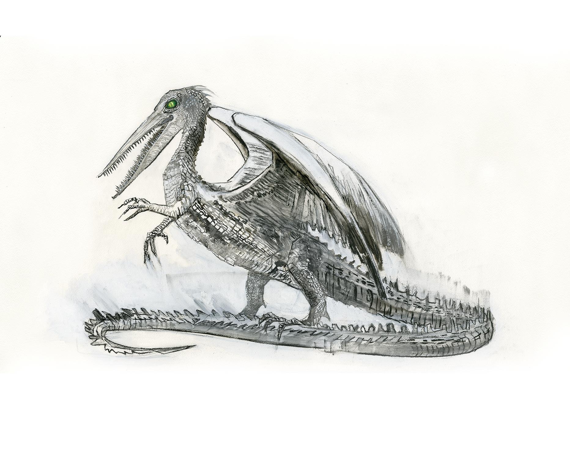 O snallygaster está em pé, sob as patas de trás. Seu corpo é todo escamado e tem patas curtas, sendo as da frente menores que as de trás, e o rabo muito longo, quase metade de todo o comprimento da criatura. O corpo se assemelha ao de um lagarto, só que com asas com penas. Já a cabeça, parece ser de um pássaro com bicos longos e dentados. O olho é a única coisa colorida do desenho, com um verde bem forte.