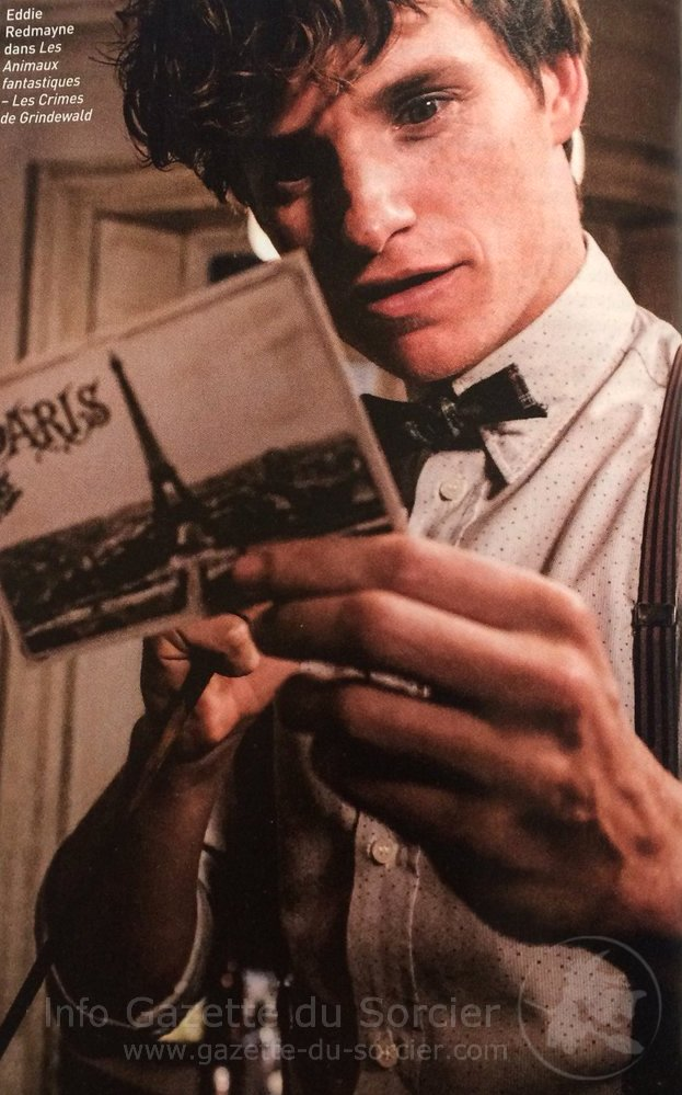 """Na imagem, Newt parece feliz enquanto lê um cartão-postal com a imagem da Torre Eiffel e o nome da cidade, Paris. Ele não está vestindo seu sobretudo, mas carrega na mão sua varinha. No canto superior esquerdo, uma legenda em francês da imagem """"Eddie Redmayne em Animais Fantásticos: Os Crimes de Grindelwald""""."""