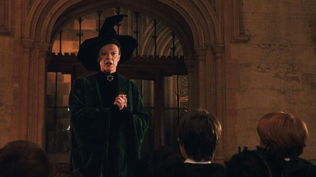 Captura de tela de Pedra Filosofal, quando McGonagall explica, na ante-sala, como será o processo de seleção. Há uma porta de vidro atrás dela e vários alunos na sua frente.