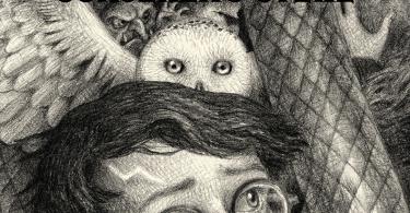 A capa de Pedra Filosofal mostra, no topo, Harry bebê embrulhado em uma manta e Hagrid segurando um ovo de dragão. No centro, há um duende e Hedwiges, a coruja de Harry. Embaixo, Harry olha para o lado, intrigado.