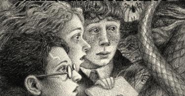 A capa de Câmara Secreta mostra, no centro, Harry, Rony e Hermione, de lado. No fundo, há uma floresta e aranhas. Uma pessoa segura um livro, que provavelmente é o diário de Tom Riddle. Embaixo, Tom Riddle escreve em seu diário, Dobby está com as mãos entrelaçadas sobre o queixo, e Draco Malfoy aparece com uma expressão malévola no rosto.