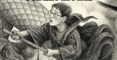 Na capa de Cálice de Fogo, Harry aparece voando, no centro, sob a lua. Ao fundo, o castelo de Hogwarts. Na parte inferior da capa, estão os outros três campeões do Torneio Tribruxo: Cedrico, Fleur e Victor Krum. Ao lado deles, há uma mão pegando o ovo de dragão e, ao fundo, o labirinto da terceira tarefa.