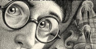 Na capa de Ordem da Fênix, no fundo, há dementadores e profecias. Embaixo, o rosto de Harry aparece, em destaque, e atrás dele, o rosto de Umbridge. Ao lado deles, há um centauro.