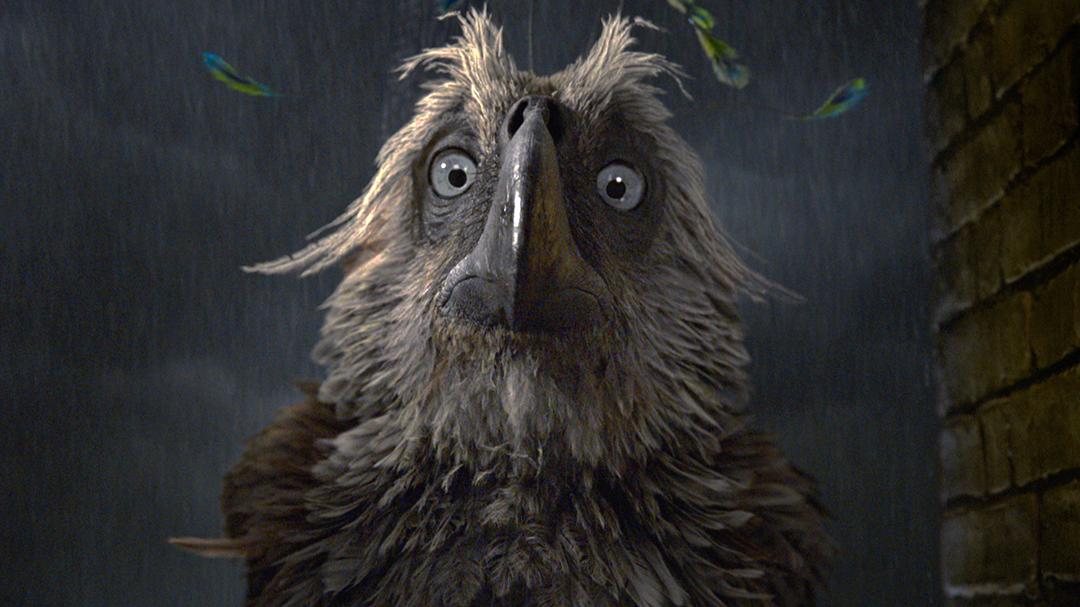 Um dos frames do trailer onde o agoureiro aparece assustado em uma janela onde dá pra ver chuva atrás.