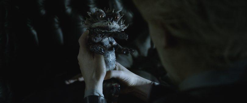 Uma pessoa segura um chupacabra. É um animal com aspecto reptiliano, pequeno, do tamanho de uma mão. Tem quatro braços. É escuro e tem e parece ter uma pele grossa.