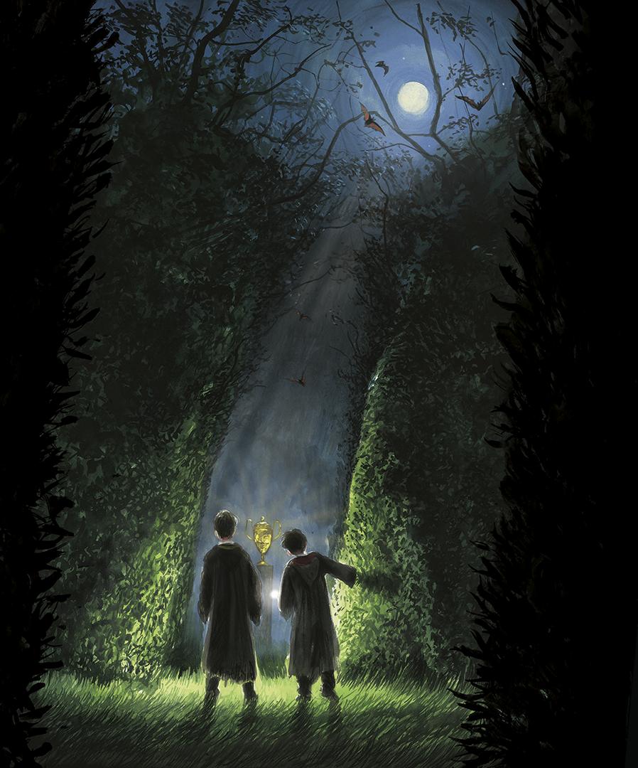Por entre as colunas de trepadeiras do labirinto da terceira tarefa, vemos Cedrico e Harry fitando um troféu dourado.