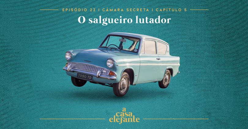 Capa do episódio. Nela, há texto com as informações do episódio e, no centro um Ford Anglia azul claro voando. O fundo é verde-água.