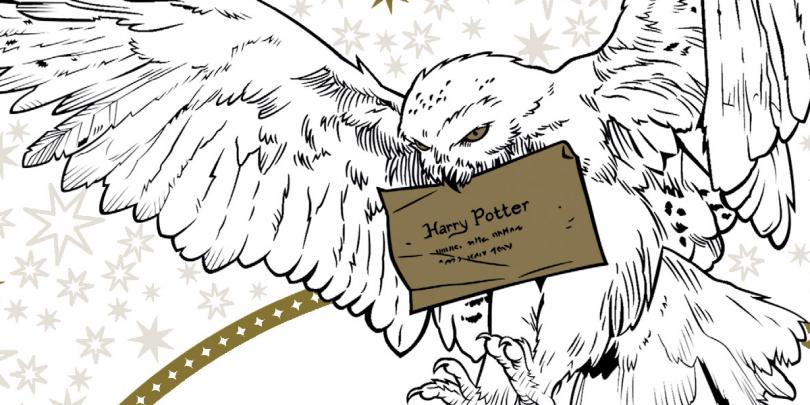 Primeiras Imagens E Mais Livros De Colorir De Harry Potter